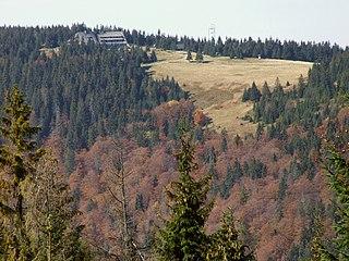 Turbacz mountain in Poland
