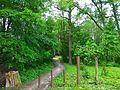Turbiv park 106.jpg