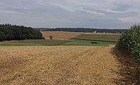 Tussen Fremdingen en Minderoffingen, panorama foto4 2016-08-04 10.55.jpg