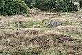 Tustrup gravpladsen (Norddjurs Kommune).Kulthus.1.47942.ajb.jpg