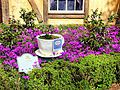 Twinings English Tea Garden (16939416085).jpg