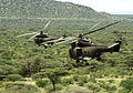 Two Royal Air Force Puma Helicopters During Ex Askari Thunder Over Kenya MOD 45153496.jpg