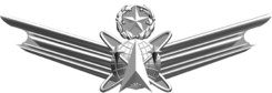 USAF Command Space Badge.png