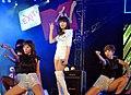 USAID, MTV EXIT concert series in Vietnam, 2010. (4678305756).jpg