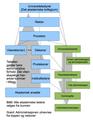 Uio-hierarki.png
