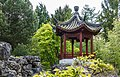 Uitzichtpunt. Locatie, Chinese tuin Het Verborgen Rijk van Ming in de Hortus Haren 03.jpg