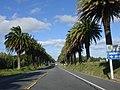 Uruguayan road.jpg