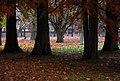 Várpark, Sárvár - IMG 0070 - Flickr - jns001.jpg