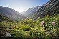 Valle de Pineta - Adrian Sediles Embi.jpg