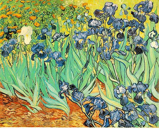 VanGogh-Irises 1