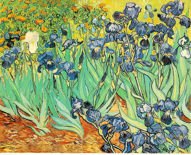 File:VanGogh-Irises 1.jpg