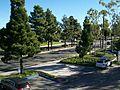 Ventura, CA, USA - panoramio - Mountain Mike Johans… (10).jpg