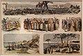 Viaggio di sua maestà l'imperatrice eugenia e del principe imperiale alla casa natale (di napoleone), litografia, 1869.jpg