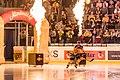 Vienna Capitals vs Fehervar AV19 -51.jpg
