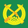 Vietnam Border Defense Force Vector.png