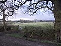 View to Holme's Farm and lake. - geograph.org.uk - 317696.jpg