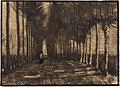 Vincent van Gogh - Avenue of Pollard Birches and Poplars (1884).jpg