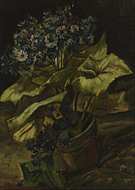 Vincent van Gogh - Cineraria - Google Art Project.jpg