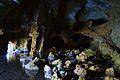 Vista de l'interior de la sala inundada de la cova Tallada.JPG