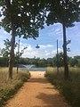 Vitrolles lac de la tuilière 9.jpg