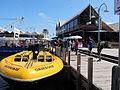 WTF Marlene Oostryck Tourist speed boat.jpg