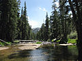 W Walker River from Emigrant out to Leavitt Mdws.jpg