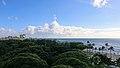 Waikiki Coast, Honolulu (503271) (17249962346).jpg