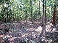 Walayar Deer Park - panoramio (3).jpg