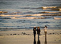 Walking on the beach (2060706404).jpg