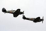 Warbirds (5102257845).jpg