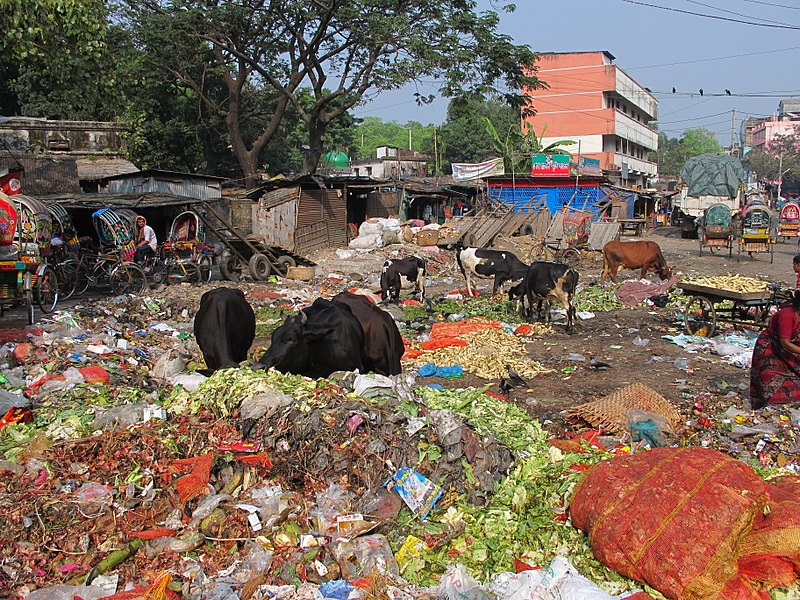 File:Waste in Chittagong 03.jpg