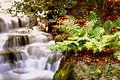 Waterfall in Grove Park, Carshalton, London Borough of Sutton.jpg