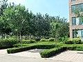 Weicheng, Weifang, Shandong, China - panoramio (121).jpg