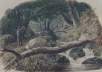 Robert Walter Weir - The Entrance To A Wood (1836), watercolor and graphite on paper, Metropolitan Museum of Art, Borough of Manhattan, New York City, NY