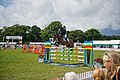West Ring, New Forest Show 2009 - geograph.org.uk - 1431506.jpg