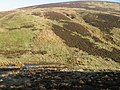 Wether Hill - geograph.org.uk - 684773.jpg