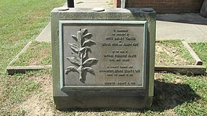 Brown County, Ohio - White burley tobacco monument dedicated on August 7, 1964 and located at the Ohio Tobacco Museum in Ripley.