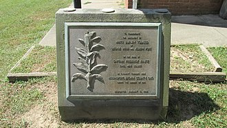 Burley (tobacco) - White burley tobacco monument dedicated on August 7, 1964 and located at the Ohio Tobacco Museum in Ripley.