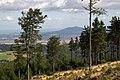 Widok na Górę Ślęża z drogi na Wielką Sowę - panoramio.jpg
