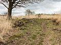 Wijnjeterper Schar, Natura 2000-gebied provincie Friesland 01.jpg
