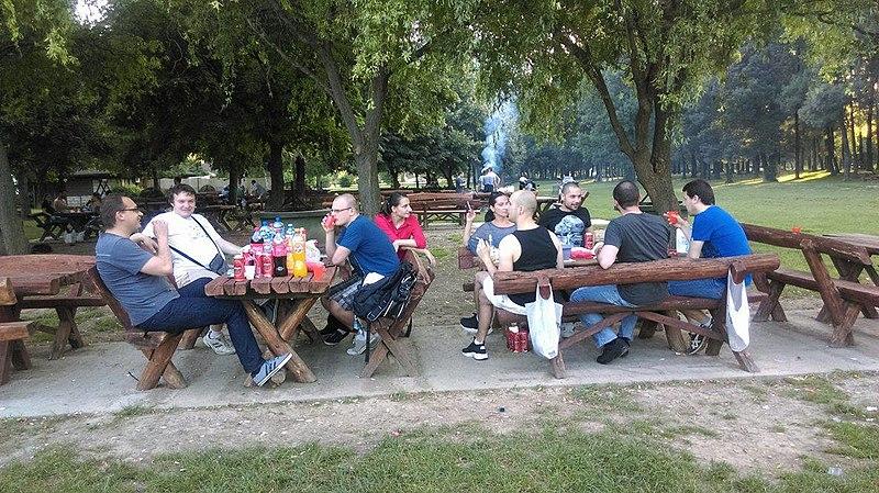 File:Wiki-picnic, June 2016 009.jpg