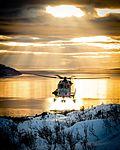 Wildcat Brigade Reconnaissance Helicopter.jpg