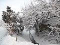 Winter 2010 nice View - panoramio.jpg