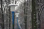 Winter auf dem DLR-Gelände Winter at DLR Cologne (8404659045).jpg