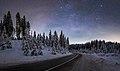 Winter night at Pokljuka forest.jpg