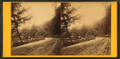 Wissahickon Lane, above Ridge Ave, by Bartlett & French.png