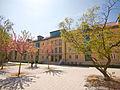 Wohnheim auf dem Campus der Universität Erfurt.jpg
