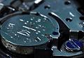 Wrist watch cell.jpg
