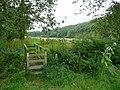 Wye Valley Walk footpath - geograph.org.uk - 931776.jpg