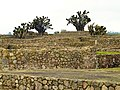 Zona Arqueológica de Tecoaque 4.jpg